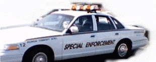 Patrol Car Graphic